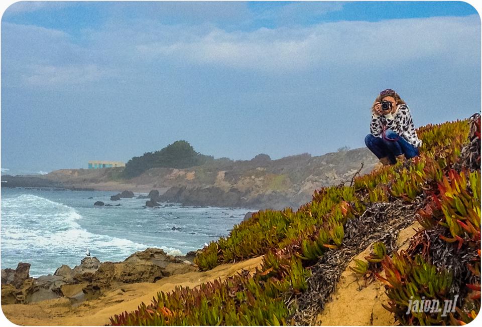 blog_o_ameryce_usa_kalifornia_ameryka_pacific_san_francisco-3