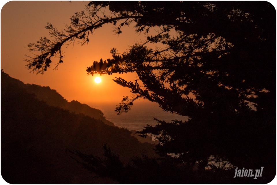 Blog o Dolinie Krzemowej. Kalifornia, Ameryka i USA