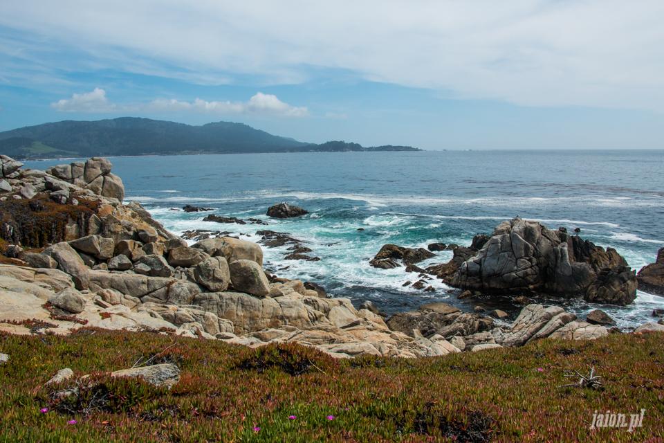 ameryka_usa_blog_big_sur_monterey_17_miles_drive_pacific_ocean-1