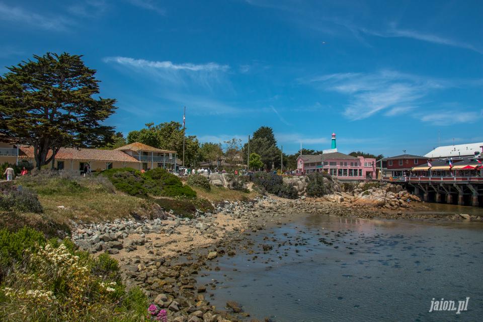 ameryka_usa_blog_big_sur_monterey_17_miles_drive_pacific_ocean-105