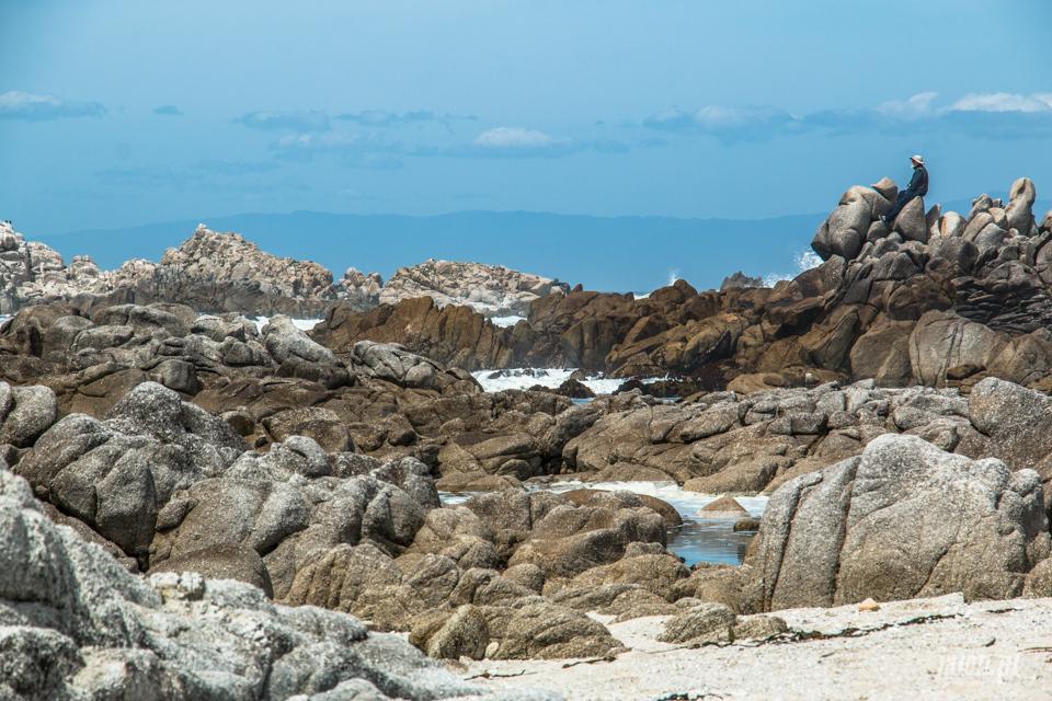 ameryka_usa_blog_big_sur_monterey_17_miles_drive_pacific_ocean-128