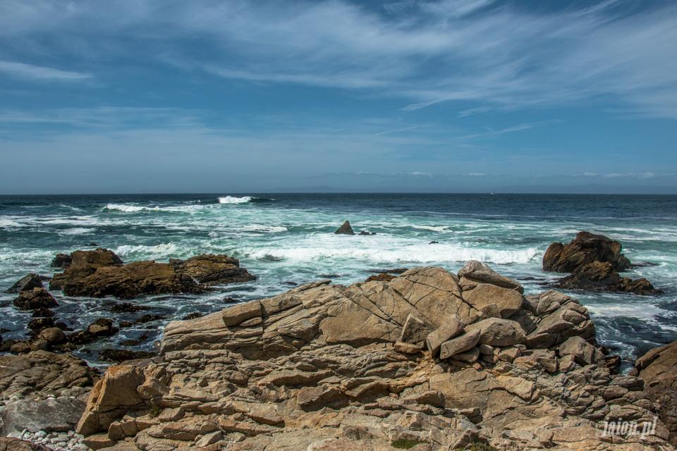 ameryka_usa_blog_big_sur_monterey_17_miles_drive_pacific_ocean-138