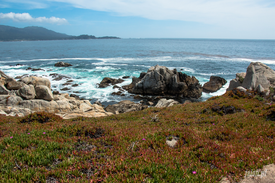 ameryka_usa_blog_big_sur_monterey_17_miles_drive_pacific_ocean-4