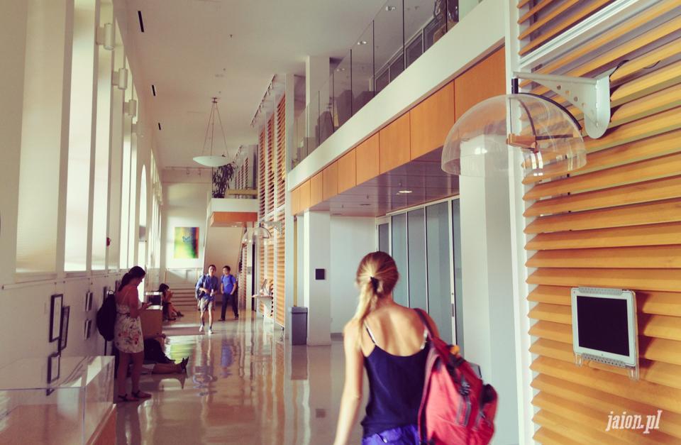 ameryka_usa_blog_uniwersytet_stanford_university-1
