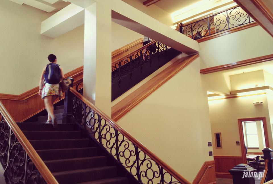 ameryka_usa_blog_uniwersytet_stanford_university-3