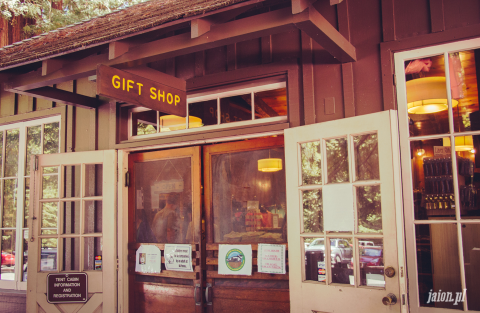 ameryka_usa_big_basin_redwood_state_park-13
