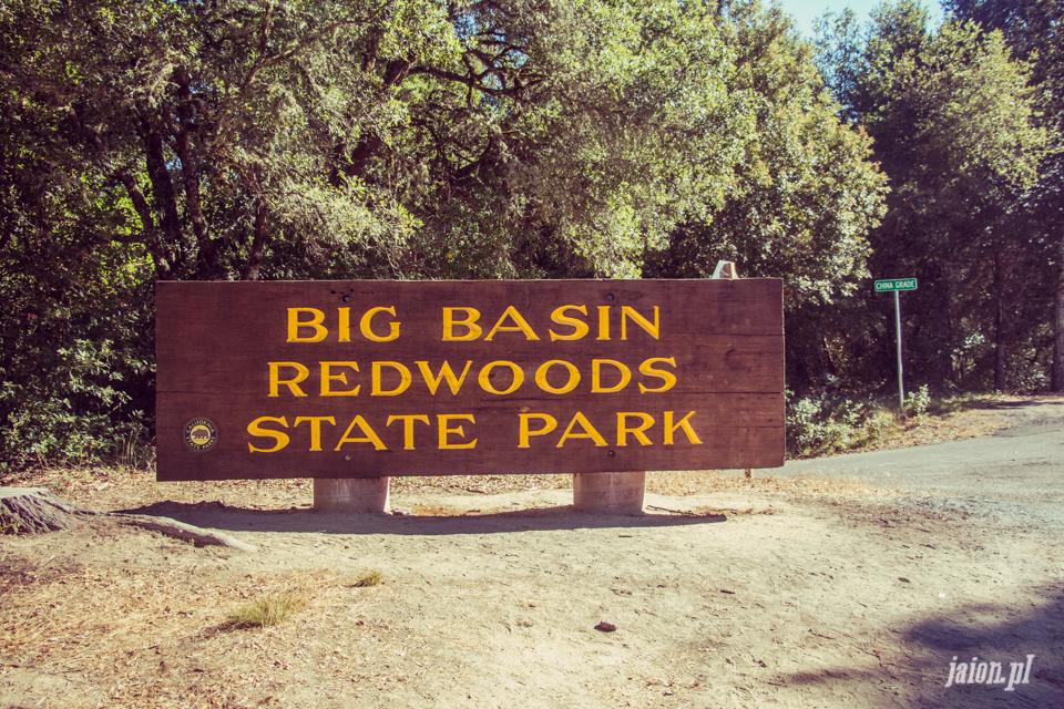 ameryka_usa_big_basin_redwood_state_park-46