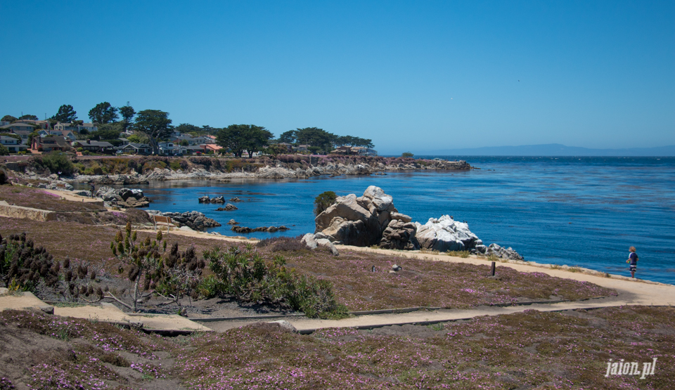 ameryka_usa_blog_monterey_kalifornia_pebble_beach_17_mile_drive_big_sur-104