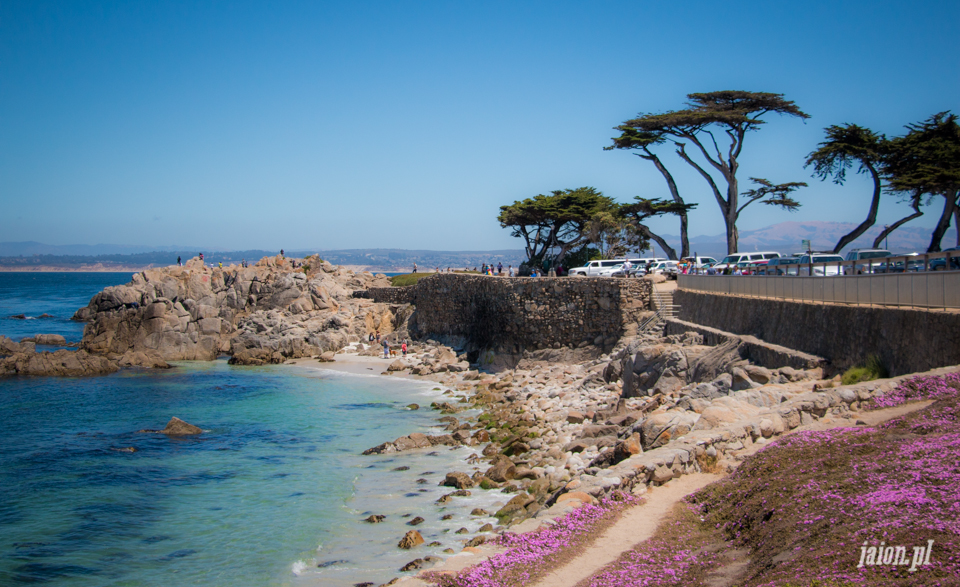 ameryka_usa_blog_monterey_kalifornia_pebble_beach_17_mile_drive_big_sur-109