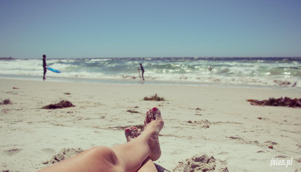 ameryka_usa_blog_monterey_kalifornia_pebble_beach_17_mile_drive_big_sur-150