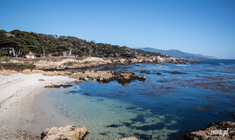 ameryka_usa_blog_monterey_kalifornia_pebble_beach_17_mile_drive_big_sur-136