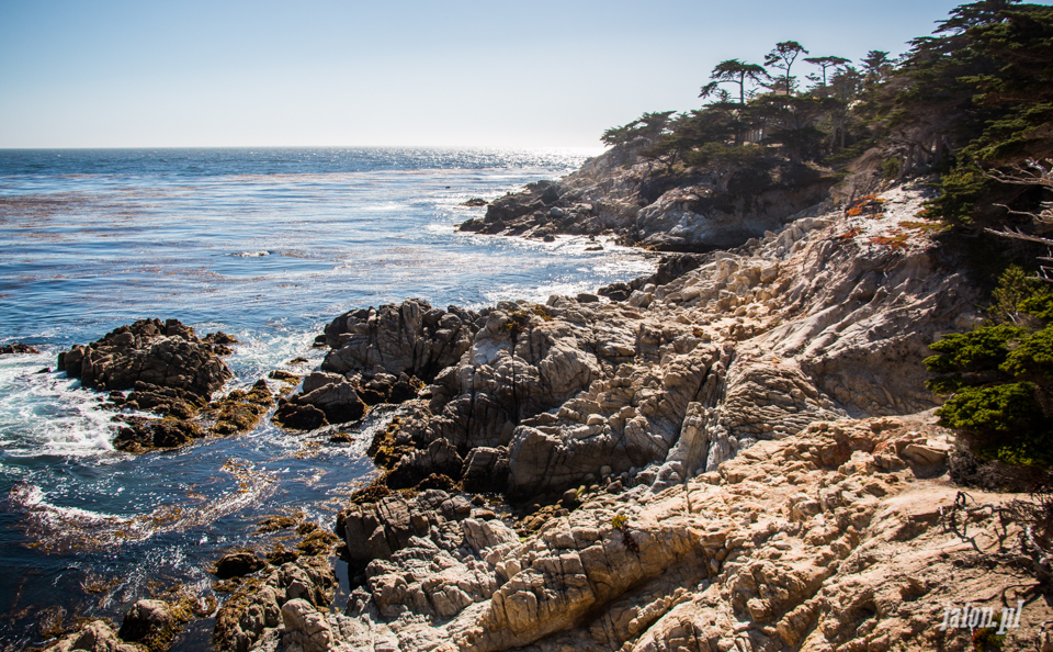 ameryka_usa_blog_monterey_kalifornia_pebble_beach_17_mile_drive_big_sur-134