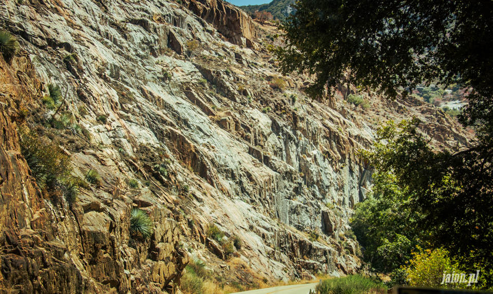 ameryka_usa_blog_sequoia_national_park-7