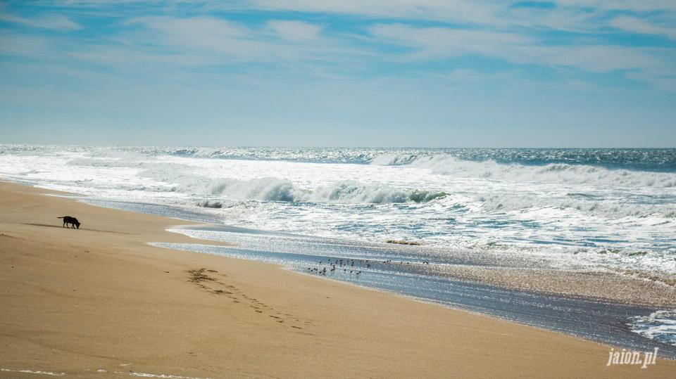 ameryka_usa_blog_ocean_pacyfik_kalifornia-23