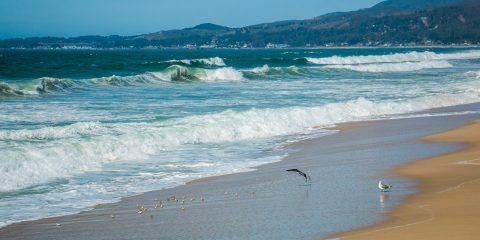 ameryka_usa_blog_ocean_pacyfik_kalifornia-26