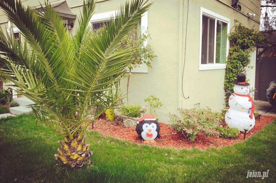 ameryka_kalifornia_swieta_blog_dekoracje_boze_narodzenie-5