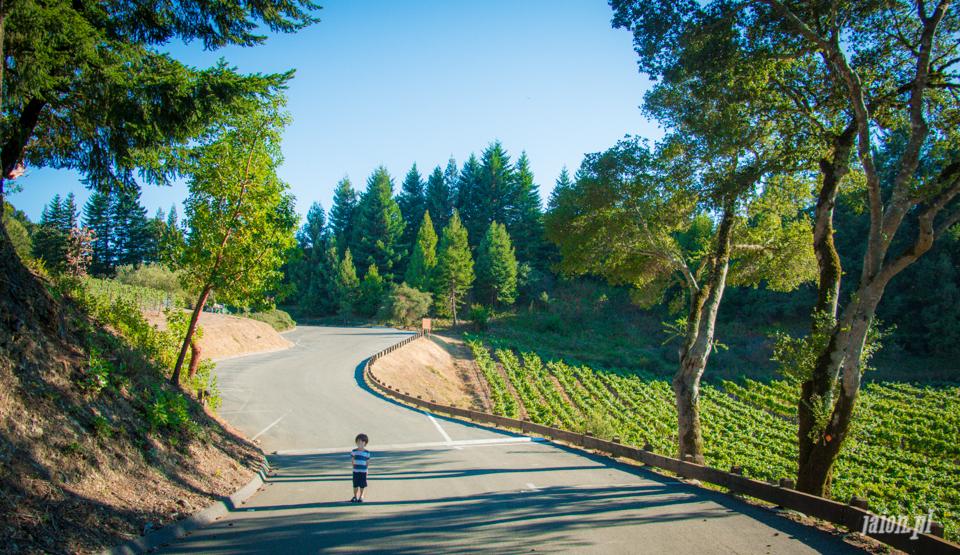 ameryka_usa_blog_kalifornia_wino_thomas_fogarty_winery-86