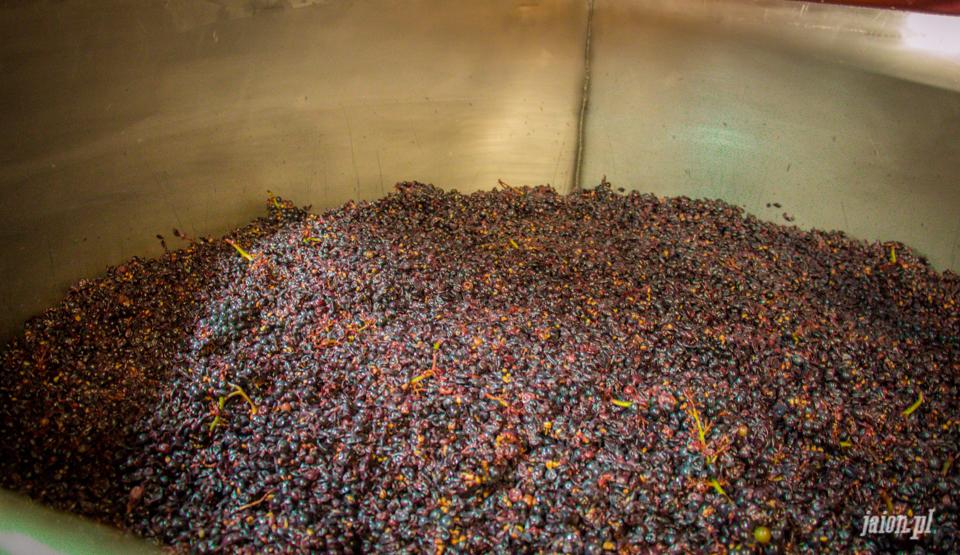 ameryka_usa_blog_kalifornia_wino_thomas_fogarty_winery-96