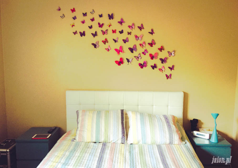 mieszkanie-w-ameryce-motyle-usa-kalifornia-blog-5