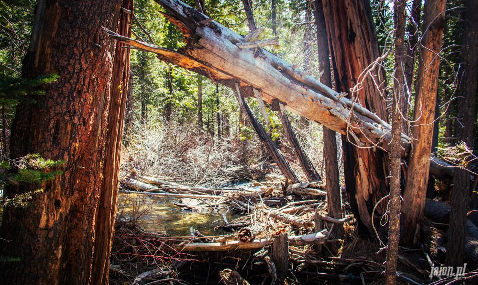 ameryka_kalifornia_tahoe_lake_jezioro-21