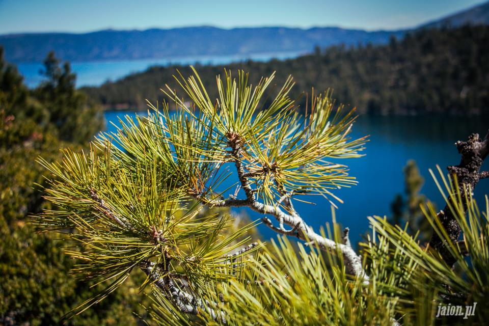 ameryka_kalifornia_tahoe_lake_jezioro-98