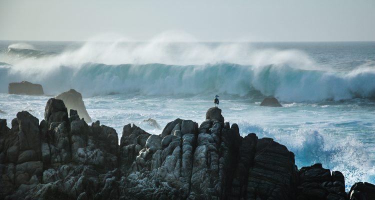 monterey-california-ocean-2