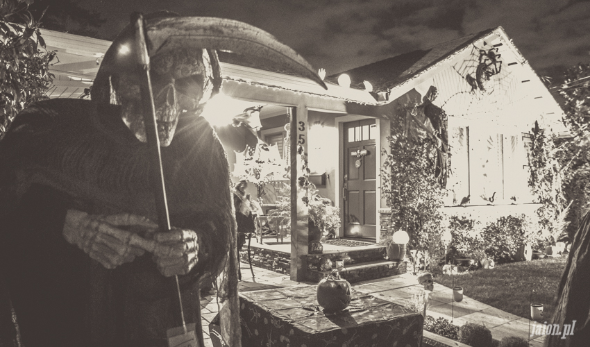 halloween-w-ameryce-201627-7
