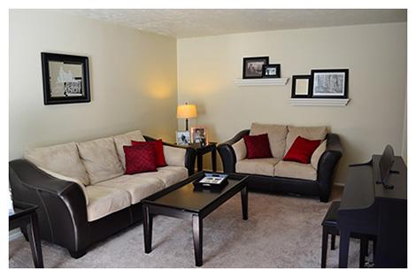 blog-o-ameryce-usa-salon-livingroom-mieszkania-wynajem-wyglad-2