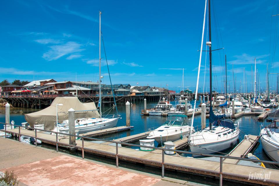 ameryka_usa_blog_big_sur_monterey_17_miles_drive_pacific_ocean-102