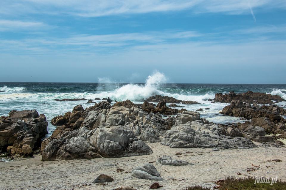 ameryka_usa_blog_big_sur_monterey_17_miles_drive_pacific_ocean-131