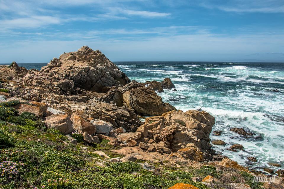 ameryka_usa_blog_big_sur_monterey_17_miles_drive_pacific_ocean-142