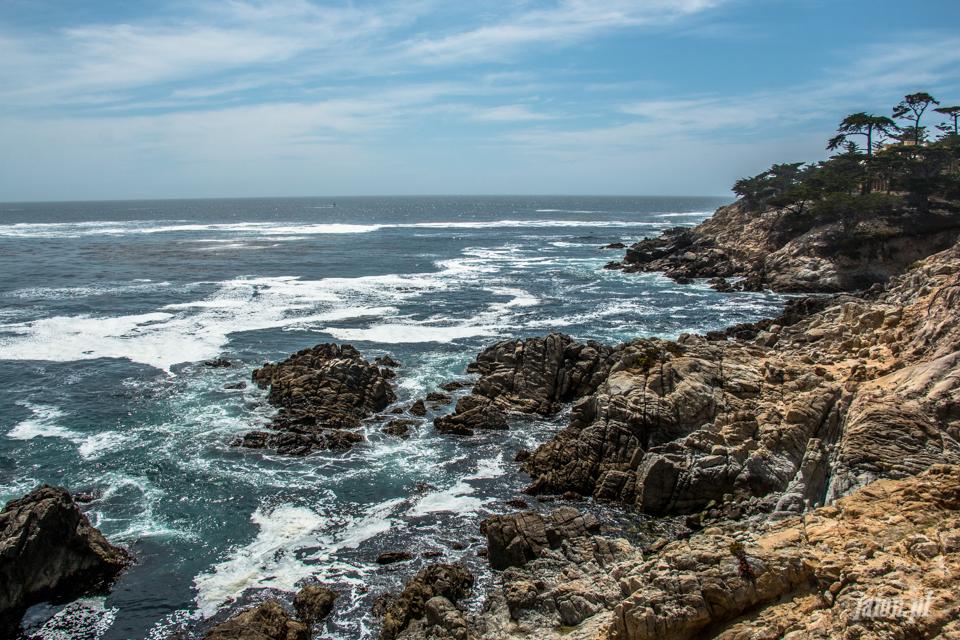 ameryka_usa_blog_big_sur_monterey_17_miles_drive_pacific_ocean-157