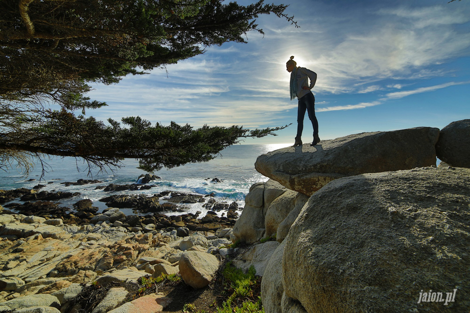 ameryka_usa_blog_big_sur_monterey_17_miles_drive_pacific_ocean-201
