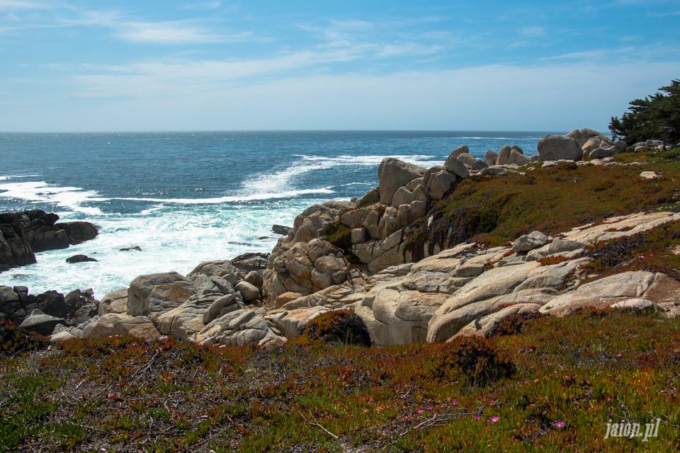 ameryka_usa_blog_big_sur_monterey_17_miles_drive_pacific_ocean-3