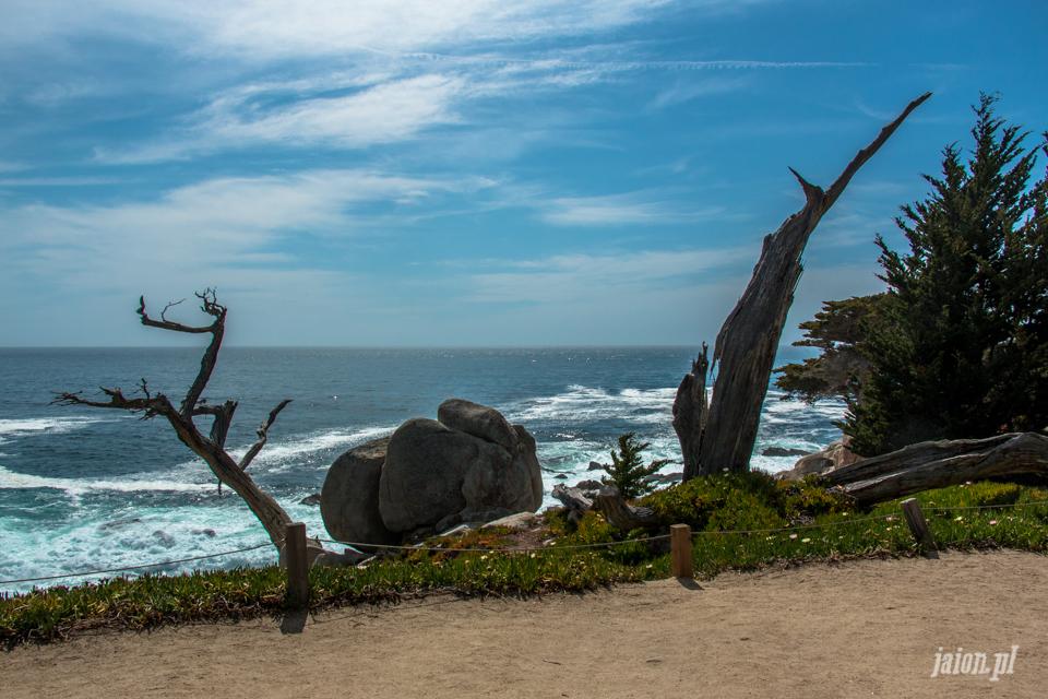 ameryka_usa_blog_big_sur_monterey_17_miles_drive_pacific_ocean-7