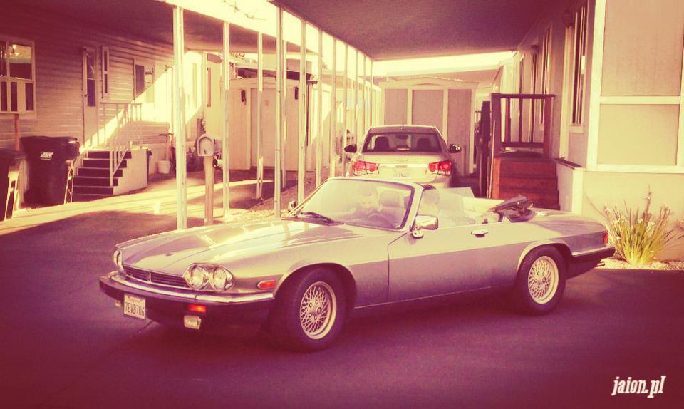 ameryka_usa_blog_jaguar_samochód-2