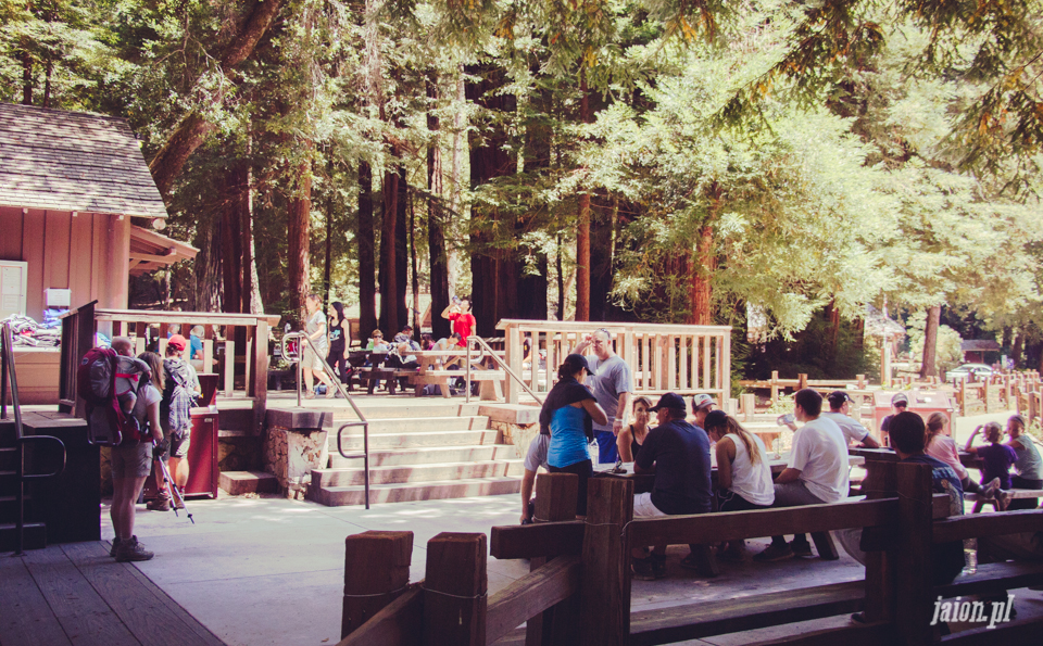 ameryka_usa_big_basin_redwood_state_park-12