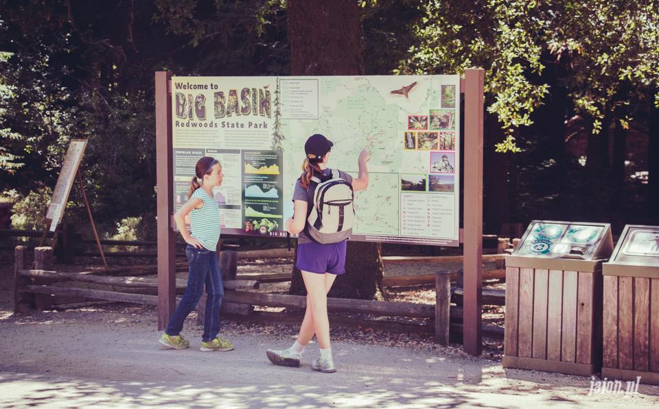 ameryka_usa_big_basin_redwood_state_park-15
