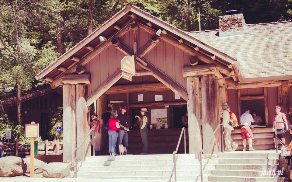 ameryka_usa_big_basin_redwood_state_park-16