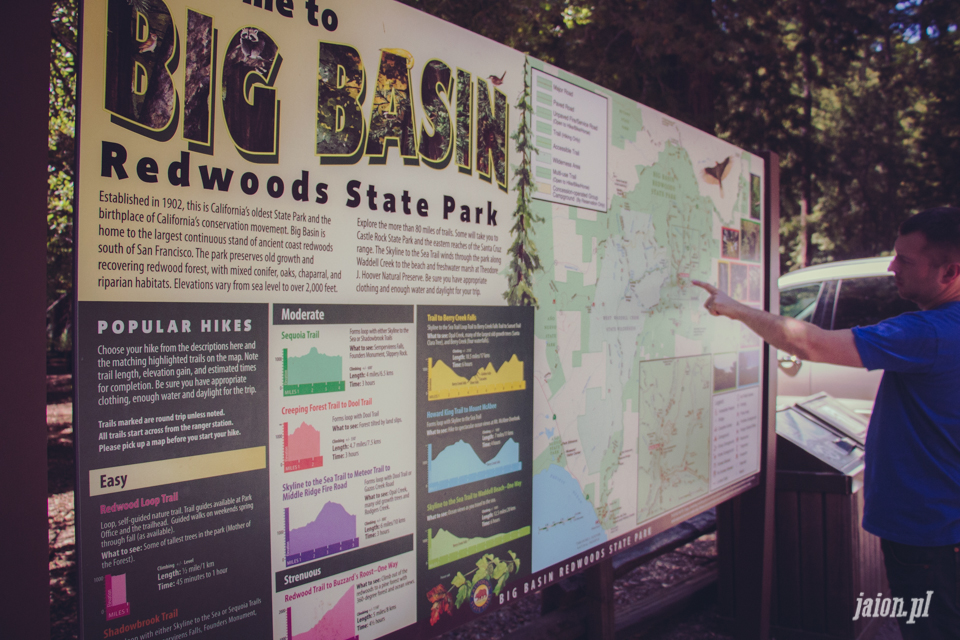 ameryka_usa_big_basin_redwood_state_park-24