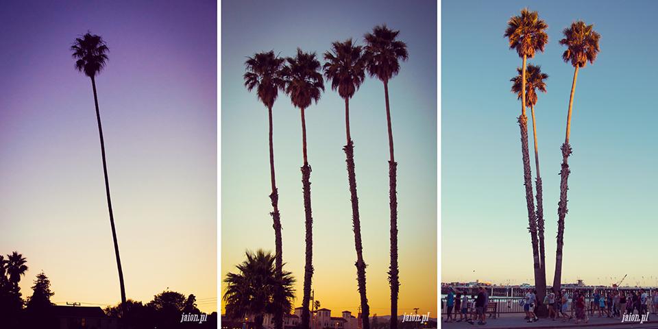 ameryka_usa_blog_monterey_kalifornia_pebble_beach_17_mile_drive_big_sur-1