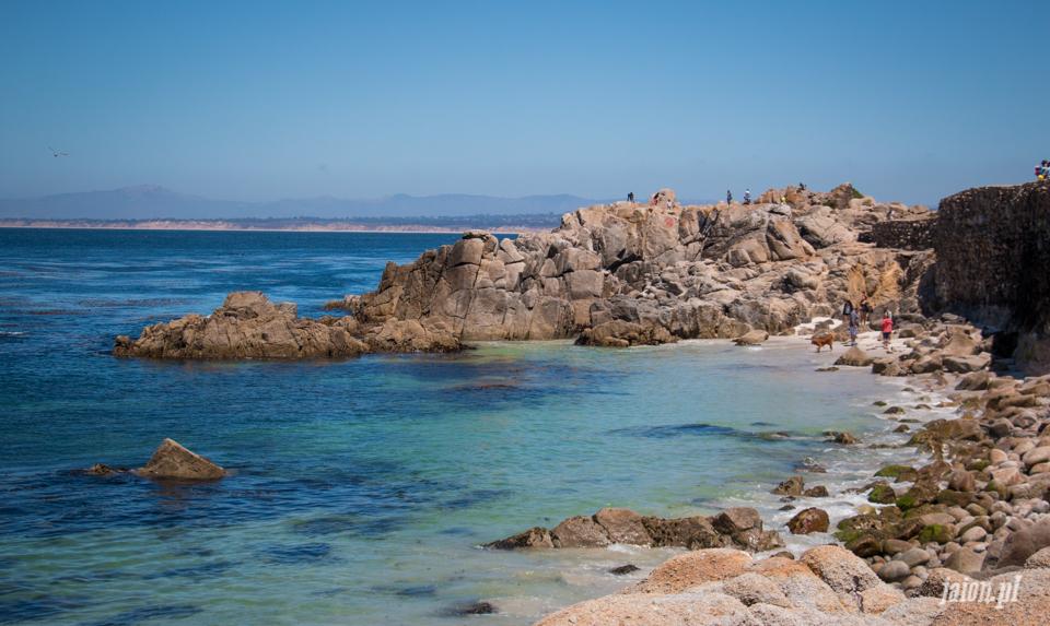 ameryka_usa_blog_monterey_kalifornia_pebble_beach_17_mile_drive_big_sur-110