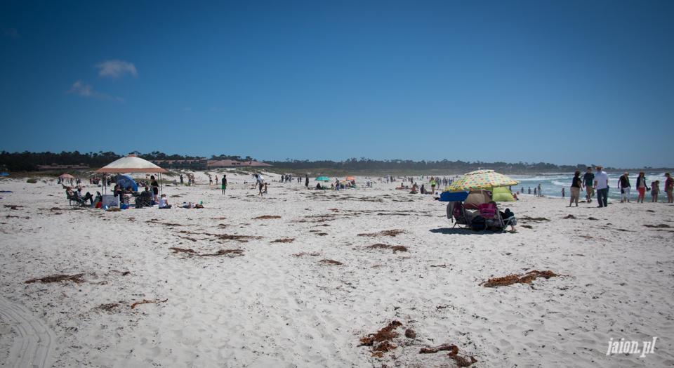 ameryka_usa_blog_monterey_kalifornia_pebble_beach_17_mile_drive_big_sur-149