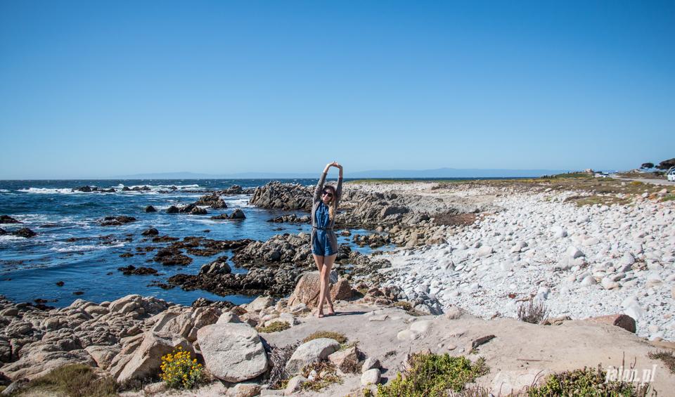 ameryka_usa_blog_monterey_kalifornia_pebble_beach_17_mile_drive_big_sur-140