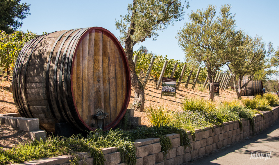 ameryka_usa_wina_kalifornijskie_mountain_winery_santa_cruz-11