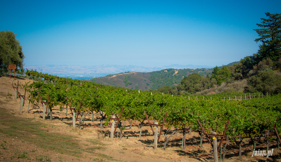 ameryka_usa_blog_kalifornia_wino_thomas_fogarty_winery-50
