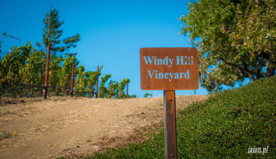 ameryka_usa_blog_kalifornia_wino_thomas_fogarty_winery-53