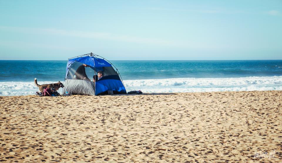 ameryka_kalifornia_moss_beach_dolina_krzemowa_blog-5