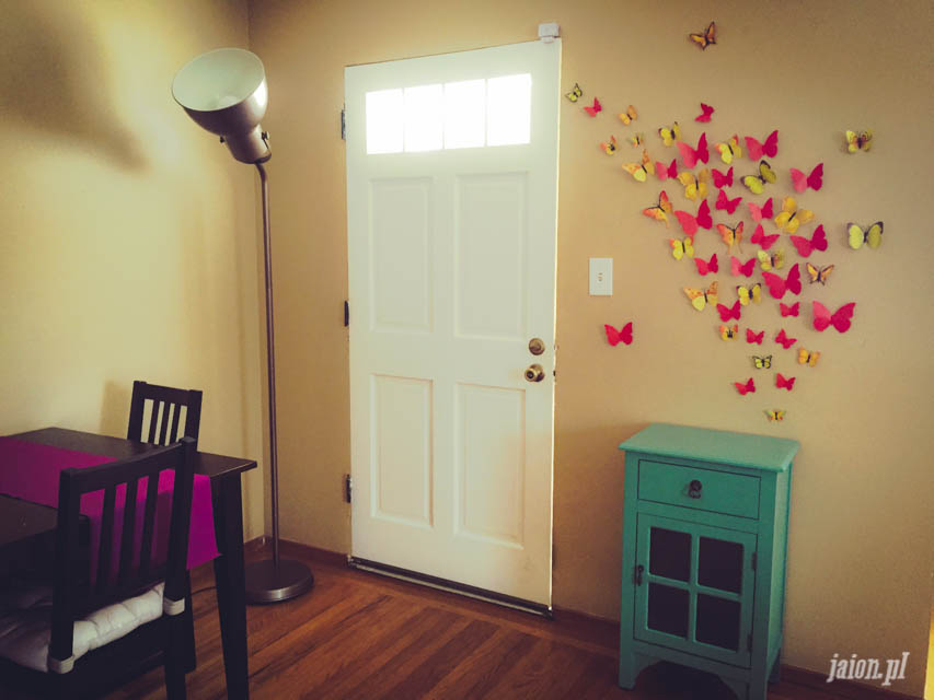 mieszkanie-w-ameryce-motyle-usa-kalifornia-blog-3