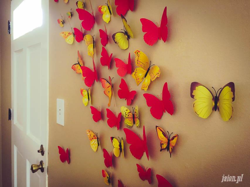 mieszkanie-w-ameryce-motyle-usa-kalifornia-blog-4
